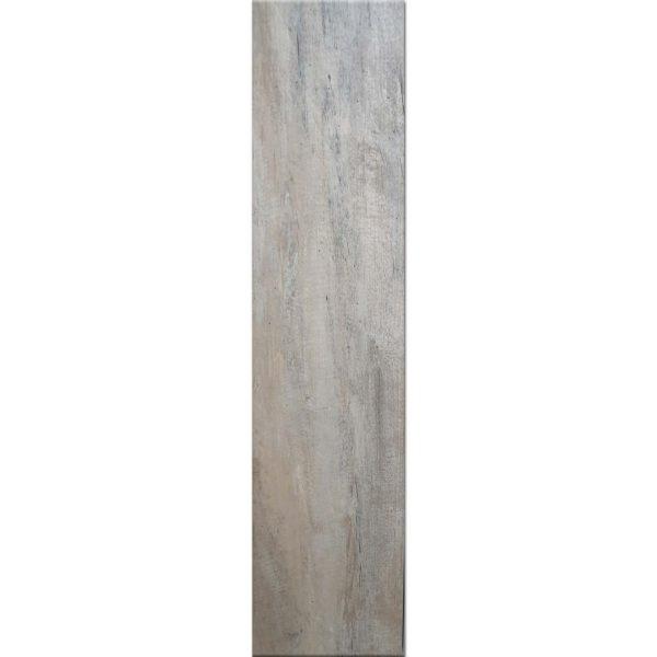 SIPF00011828 timber tortora